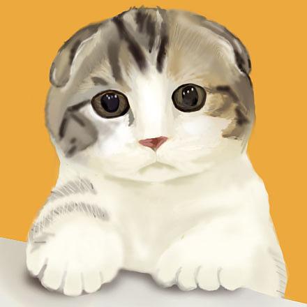 根据图片手绘画的小猫咪