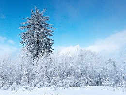 2017年的吉林第一场雪