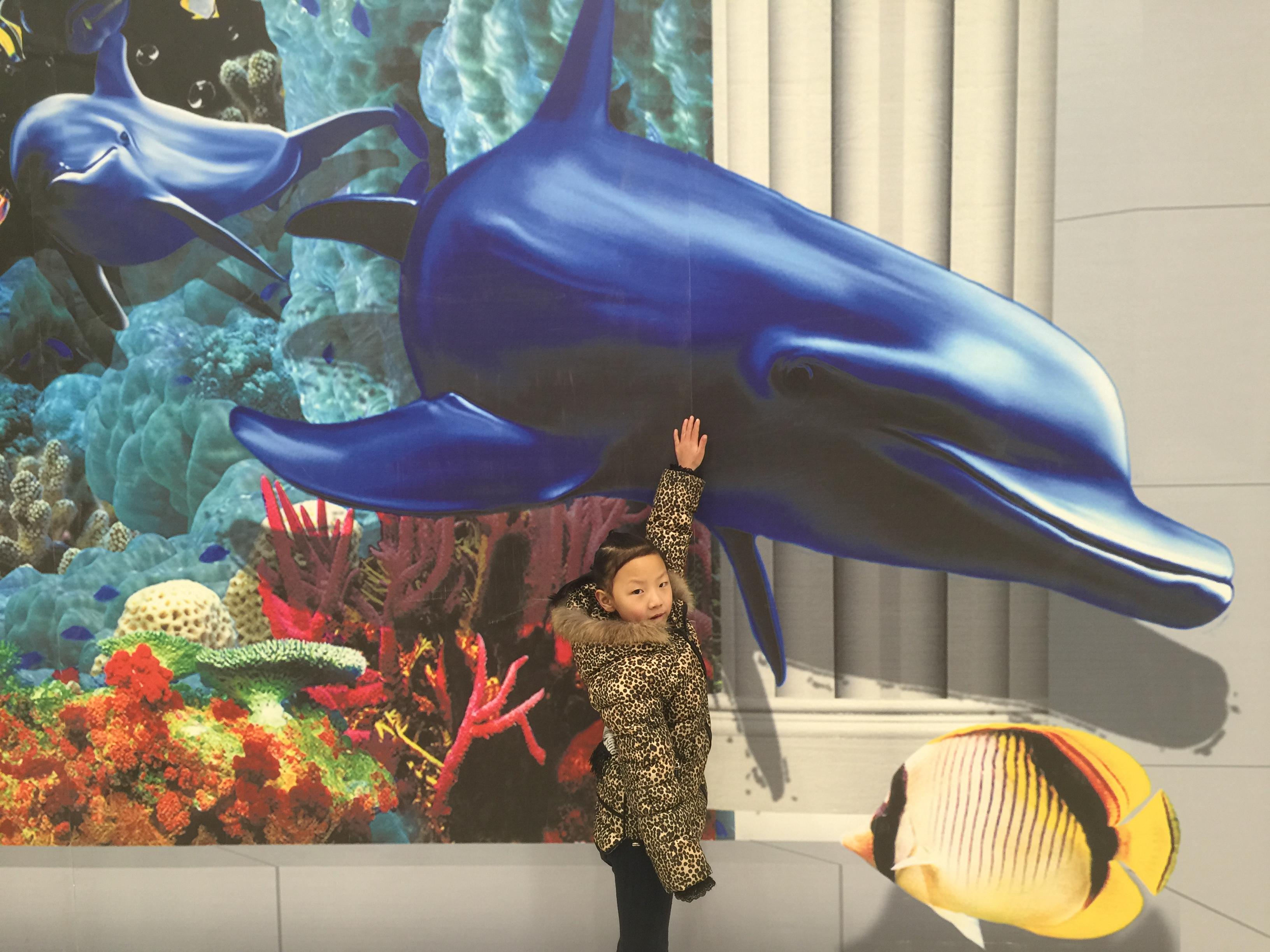 北京3d立体画之【海底世界】3d墙体彩绘展示