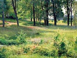 风景油画练习《阳光下的小树林》