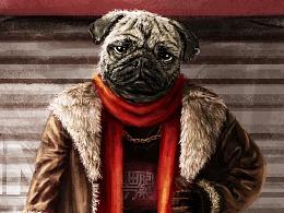 狗富贵,勿相汪