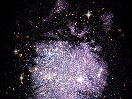 星空中的猫(练习)