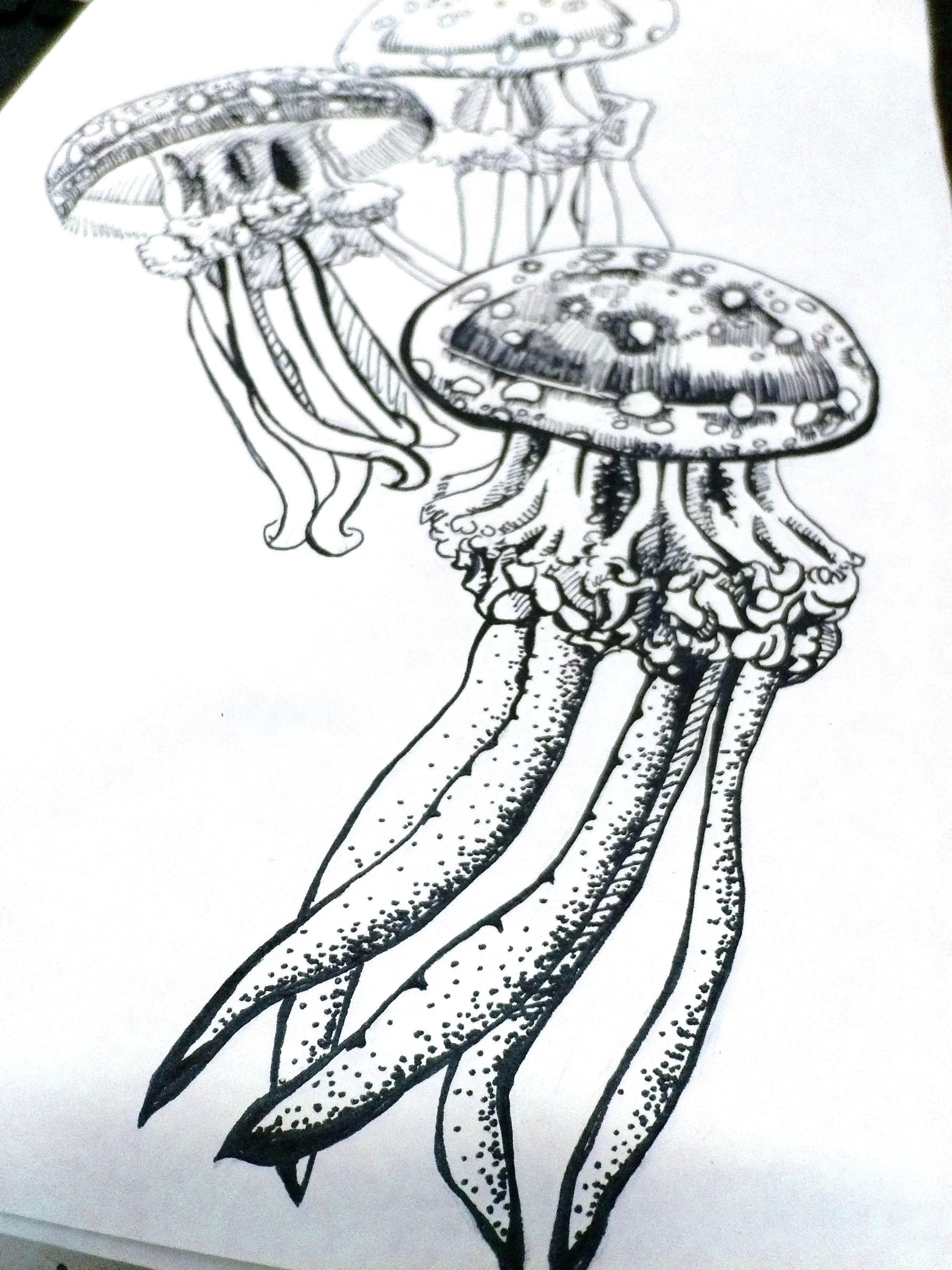 水母手绘练习