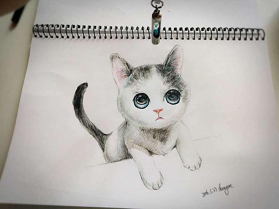 人与猫咪手绘插画
