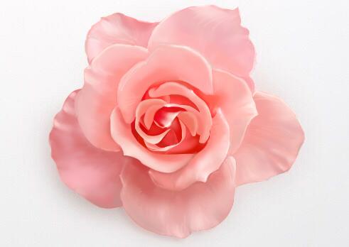 一朵花图片