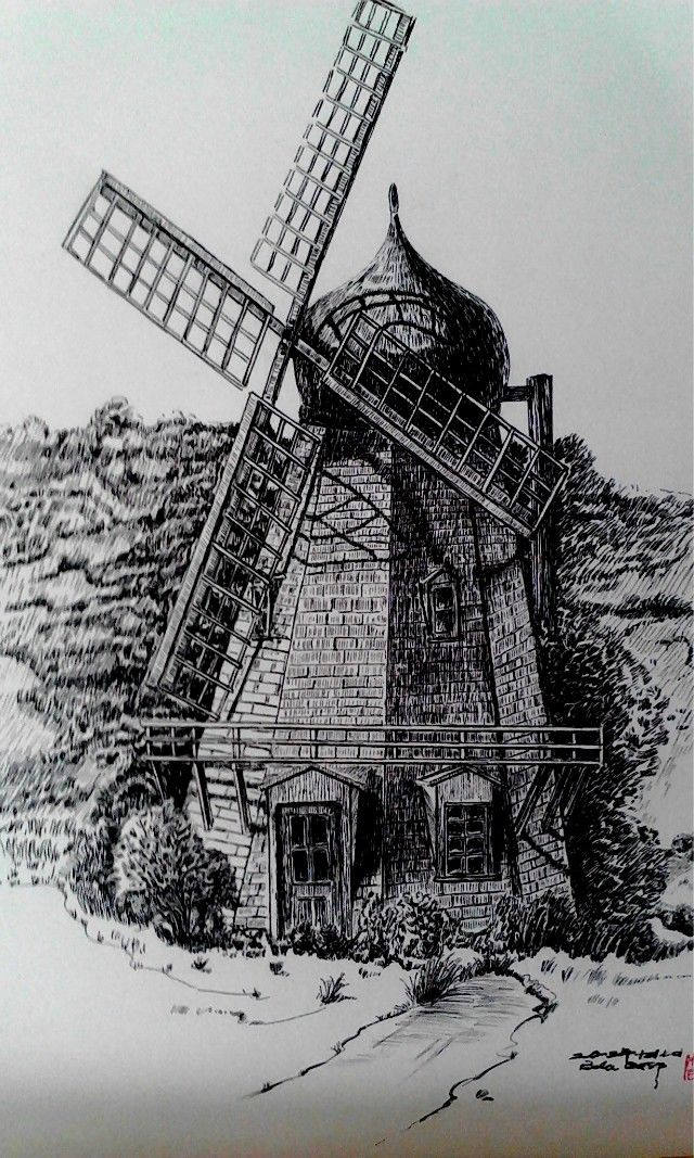 荷兰弟手绘插画