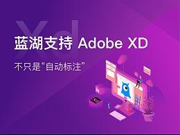 """蓝湖支持 Adobe XD ,不只是""""自动标注"""""""
