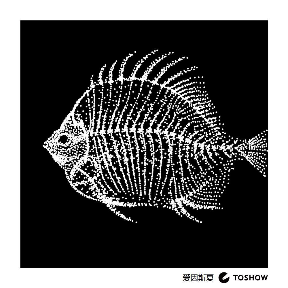 x-ray 鱼图片