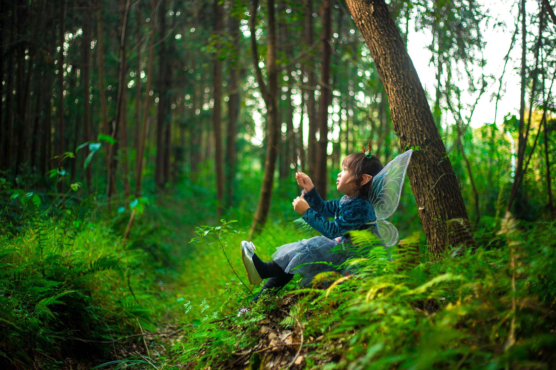 森林精灵超萌简笔画
