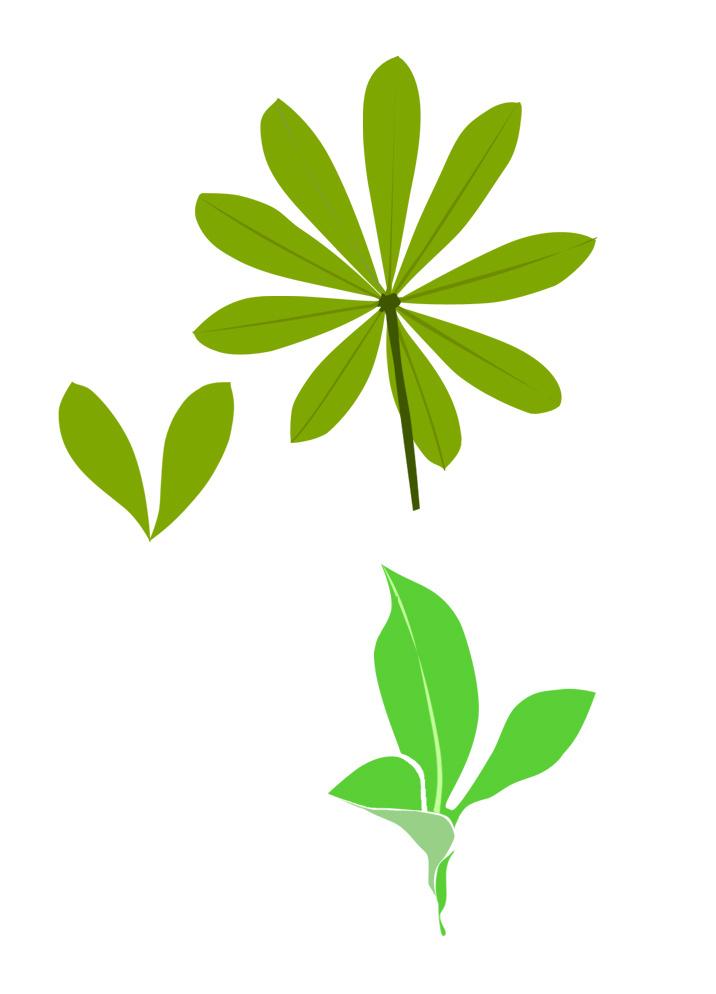 树叶|平面|图案|neptune_0 - 原创作品 - 站酷 (zcool)图片