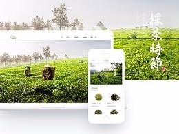 茶叶类模板网站
