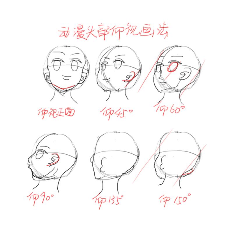 【学设计的小豆芽】第8画—动漫人物头部仰视转动画法