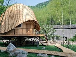 隐身翠竹的舞动树屋-自然木构悬空宅