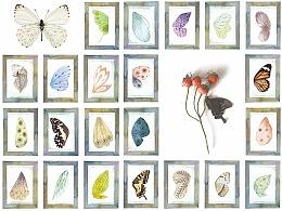 最新出版水彩教程书《昆虫记》