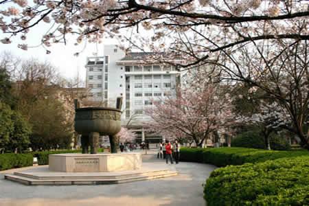 南京林业大学本科生毕业设计图片