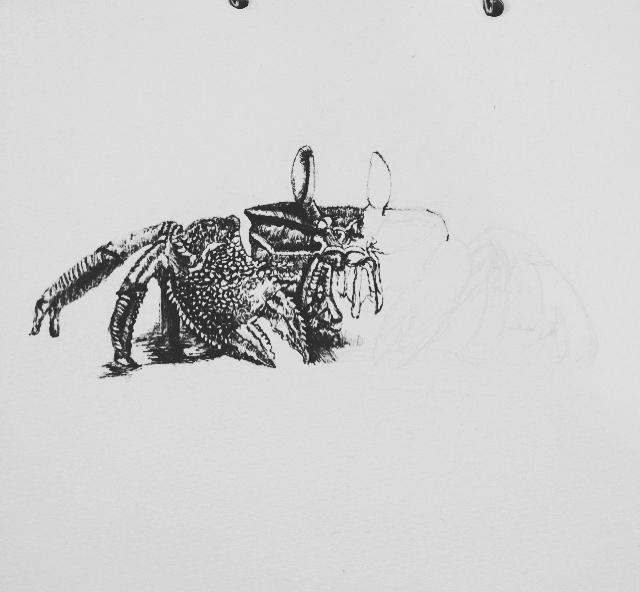 针管笔画--临摹系列