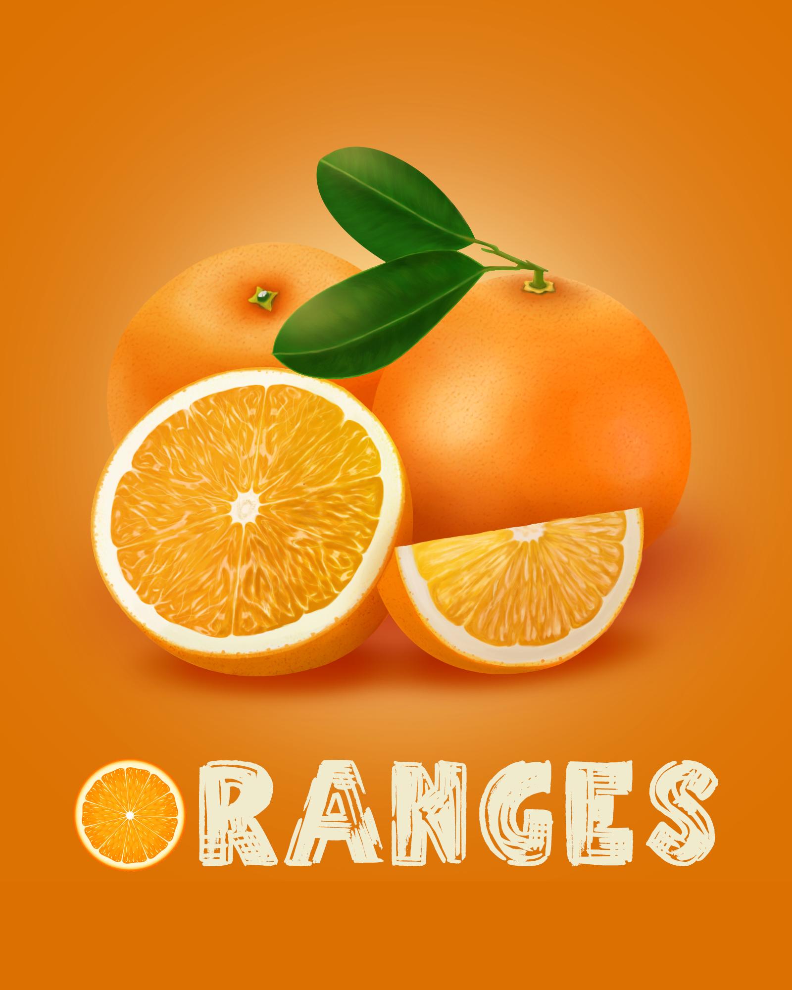 精品手绘橙子矢量素材
