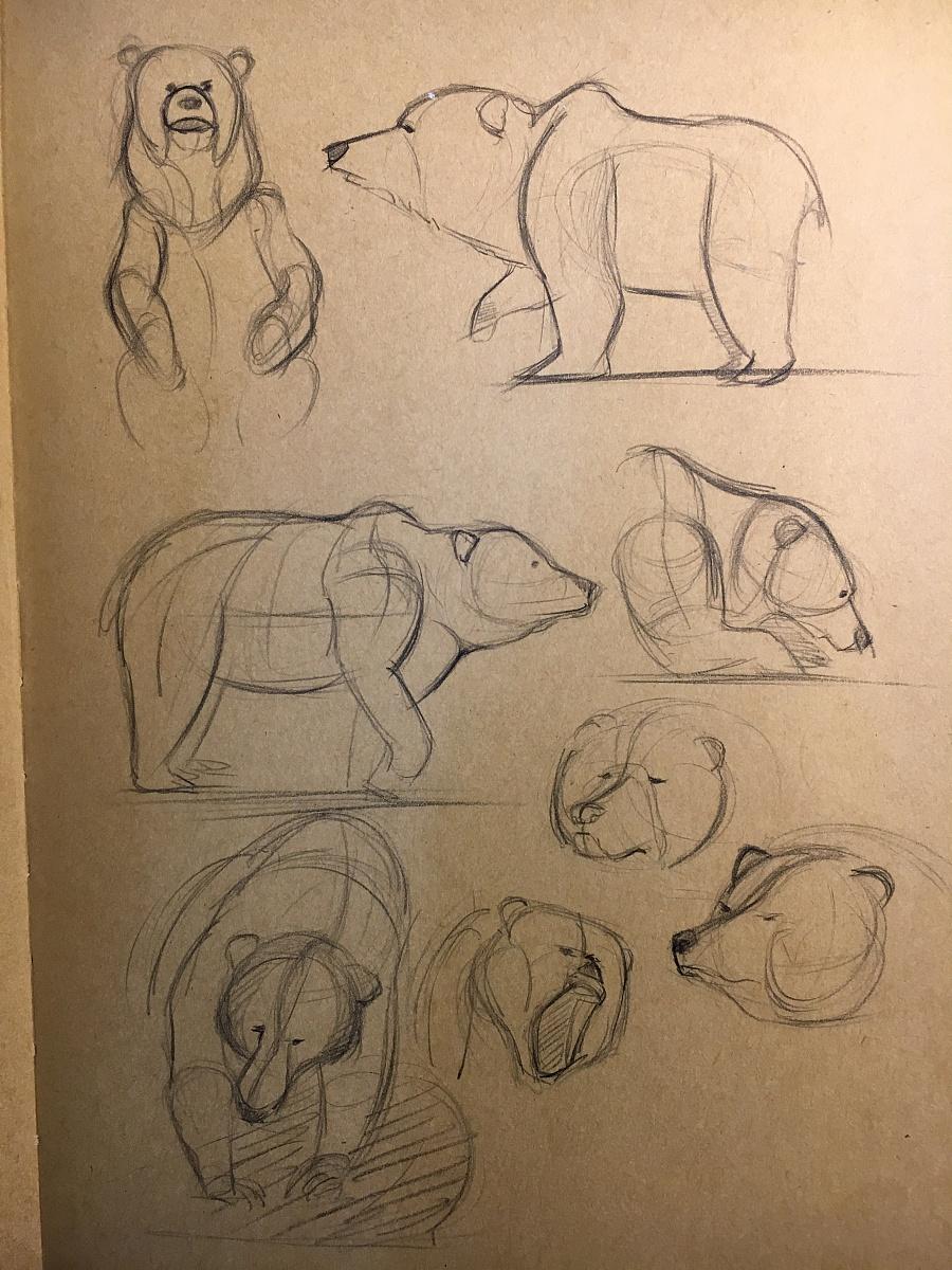 动物造型明暗手绘