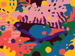 Nick Liefhebber为Tropicalismo提供KV主视觉设计