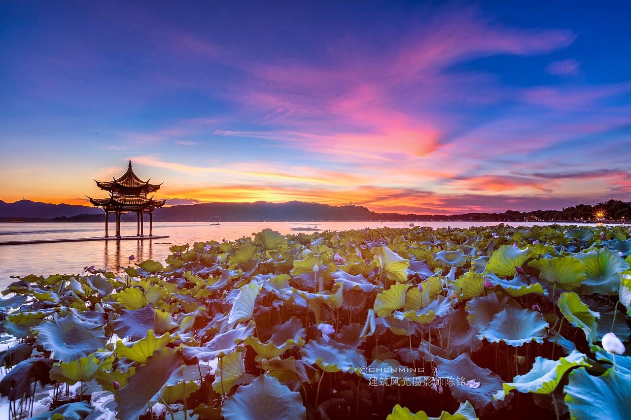 醉入杭州西湖|摄影|风光|建筑摄影师陈铭 - 原创