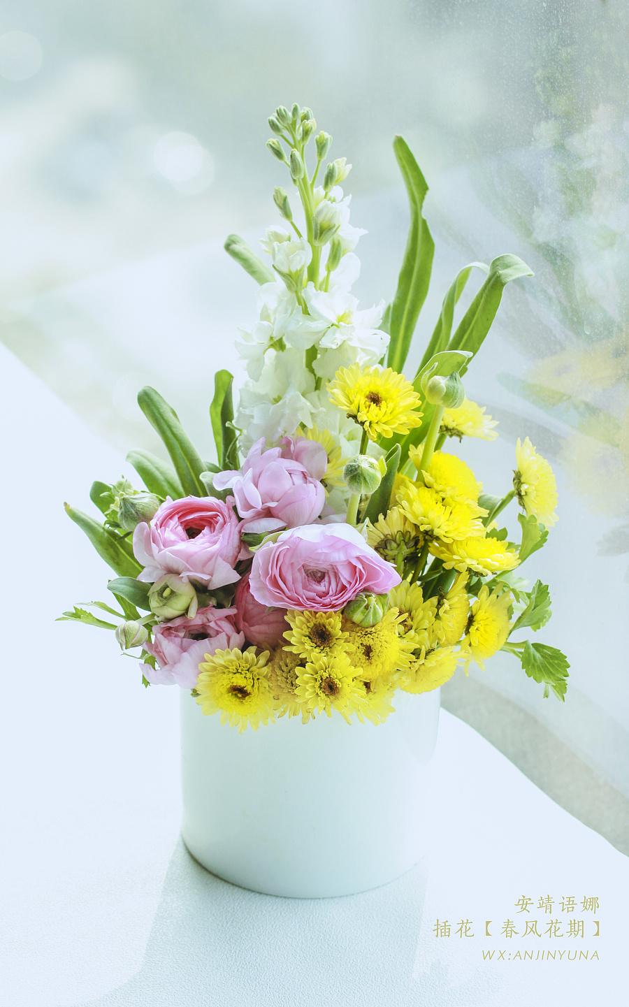 花言花语|花艺产品摄影