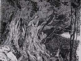 手绘  榕树乡间.