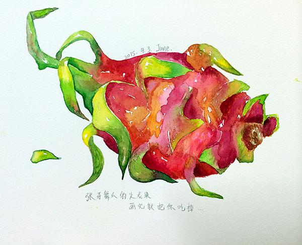 手绘水彩系列1—火龙果|绘画习作|插画|大君君君图片