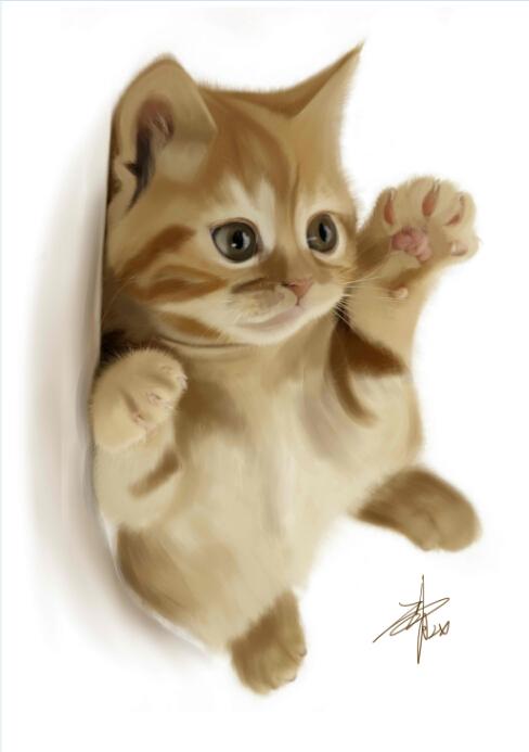 猫咪~ 插画 其他插画 cat_x - 原创作品 - 站酷