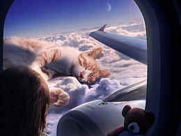 创意海报合成《云上猫》