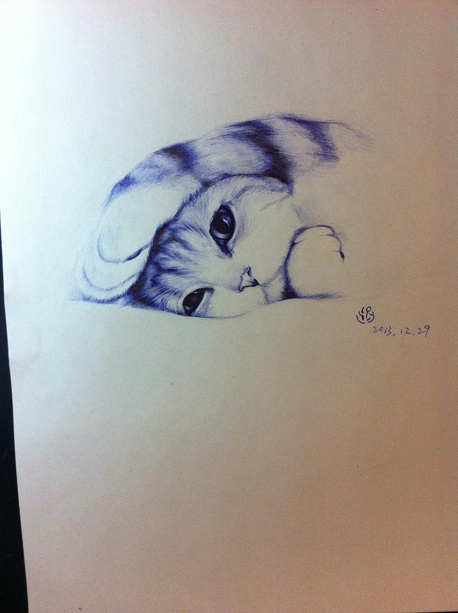 圆珠笔手绘 猫