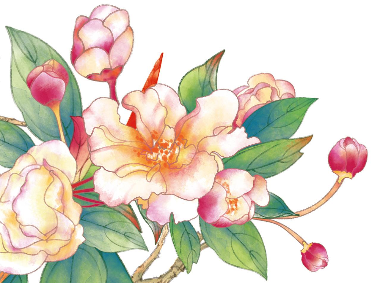 手绘插画-带质感花朵