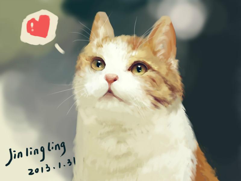 原创作品:手绘猫咪