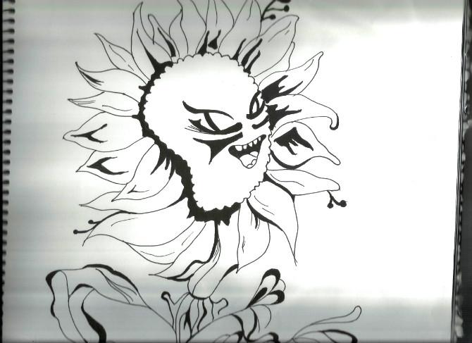"""手绘黑白画""""花""""还是爱花"""