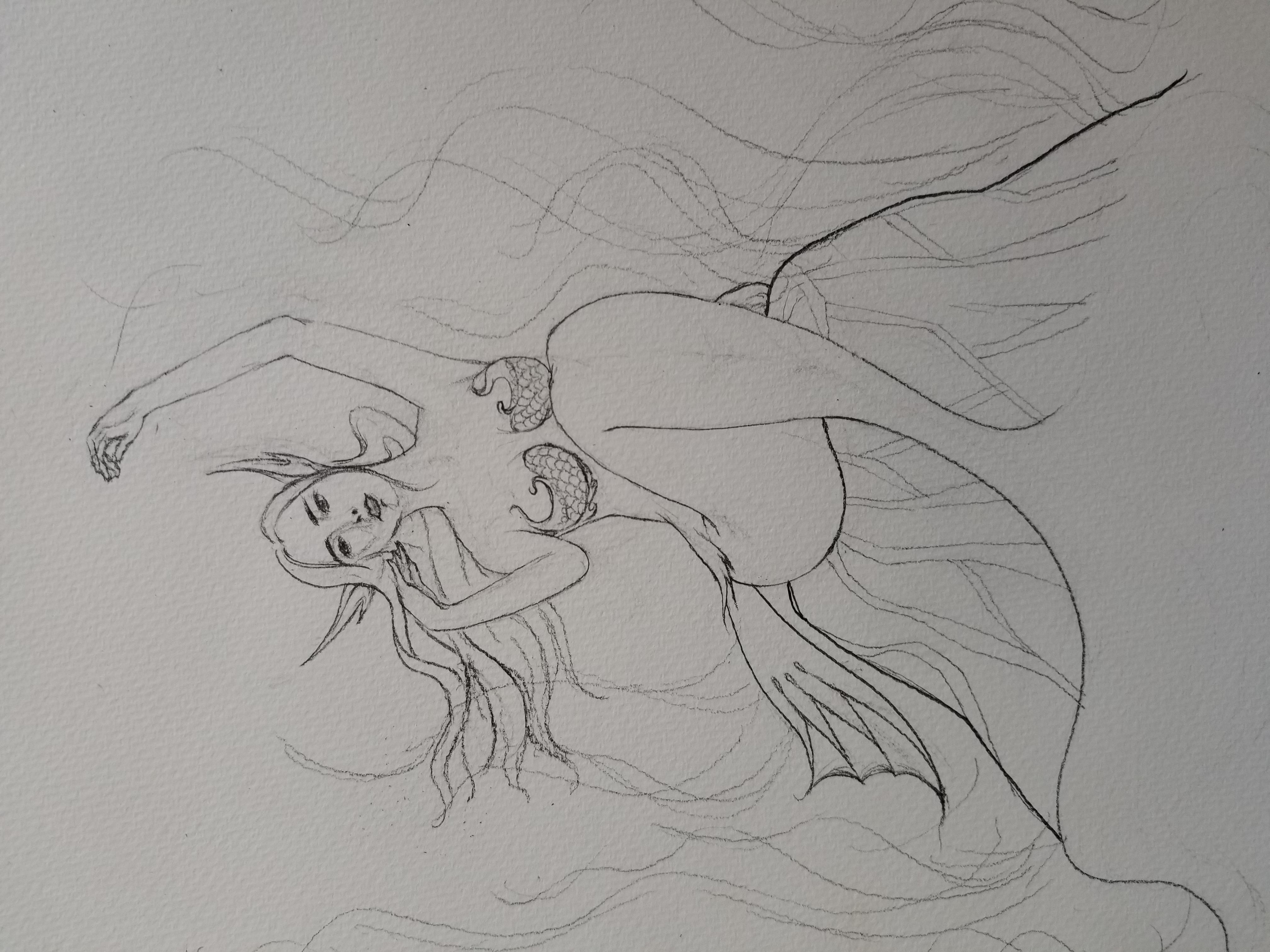 简笔画 手绘 素描 线稿 4032_3024