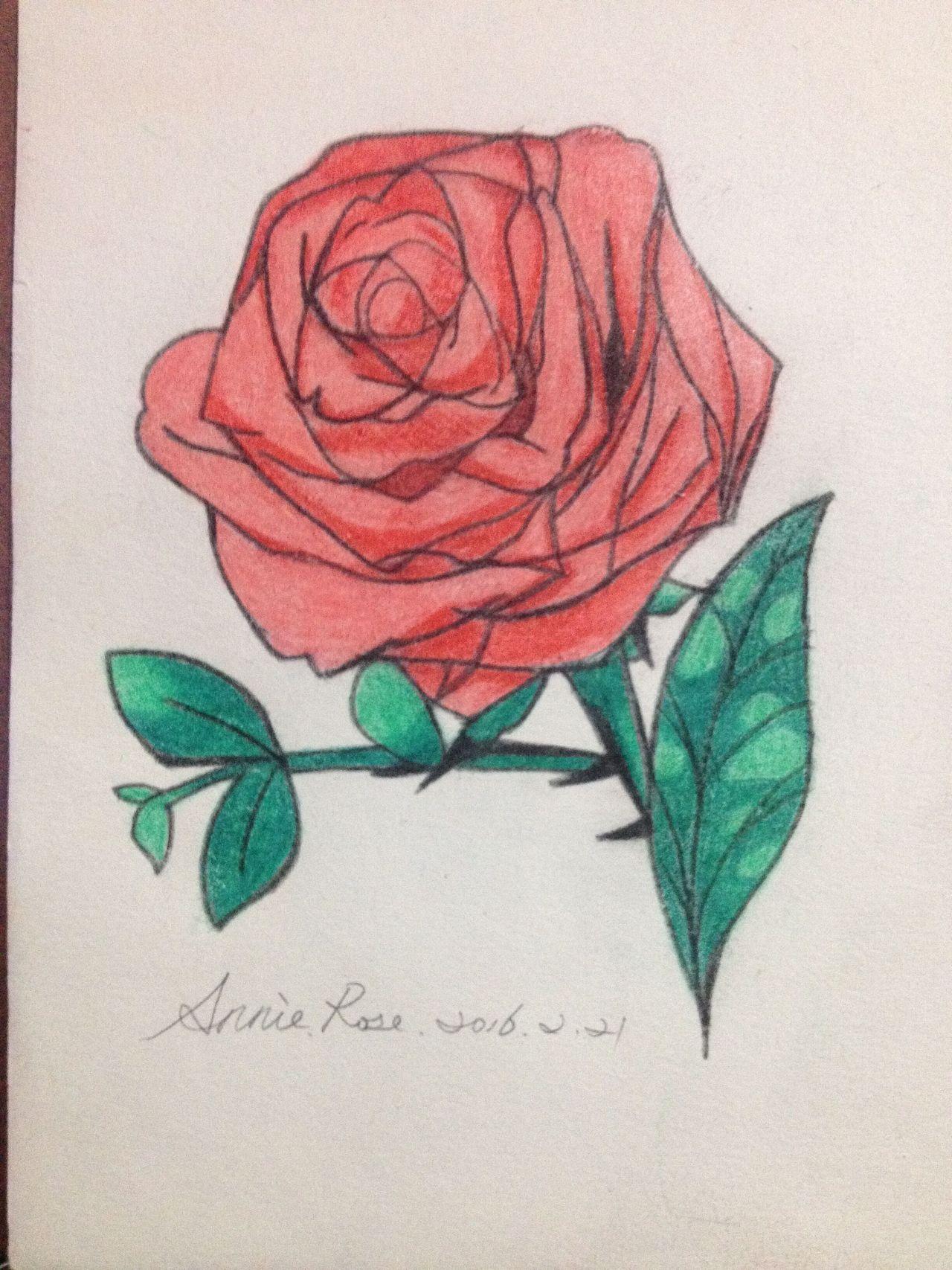 春天来了素描一张蔷薇花图片