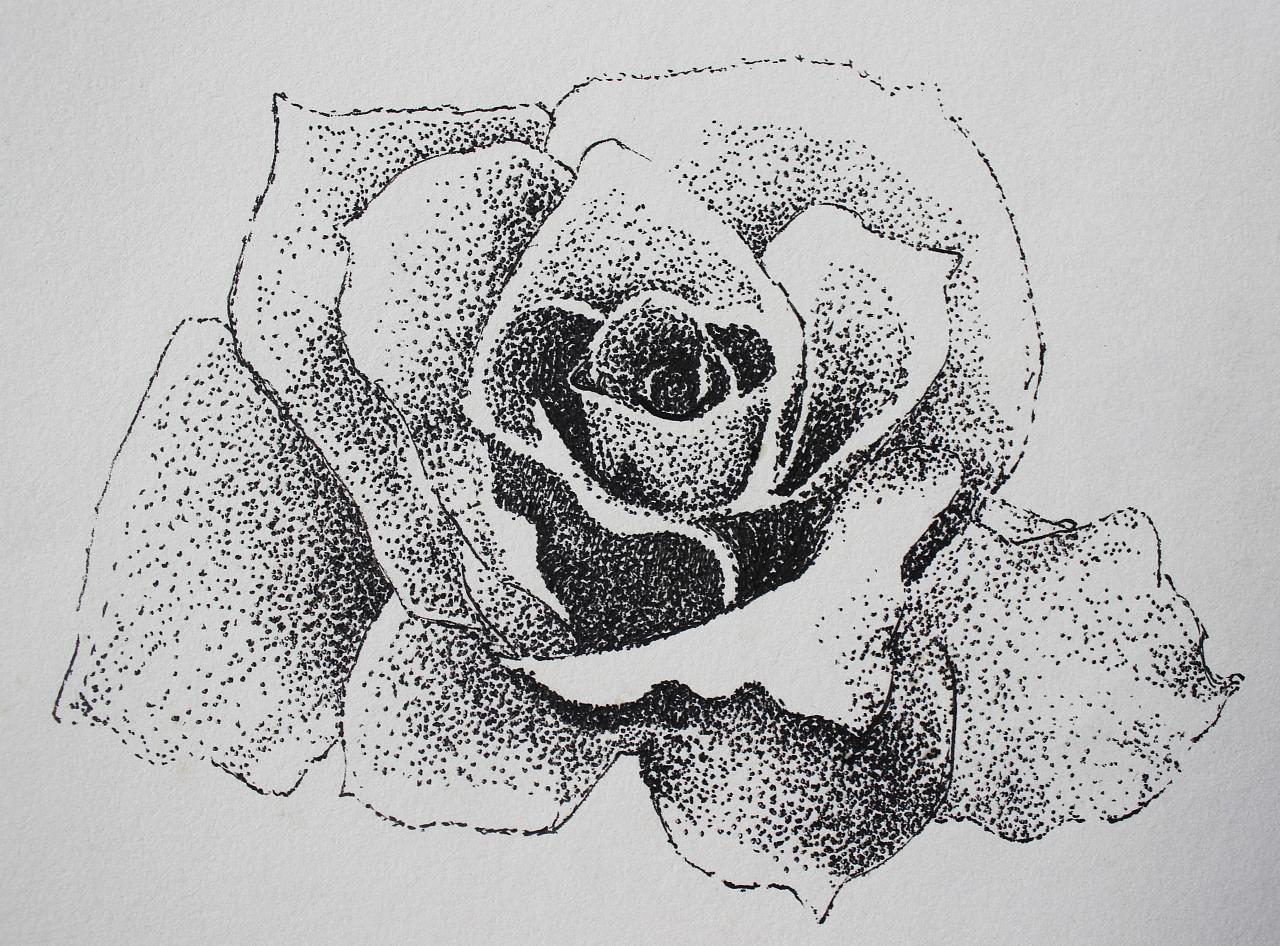 点线面-圆珠笔手绘图片
