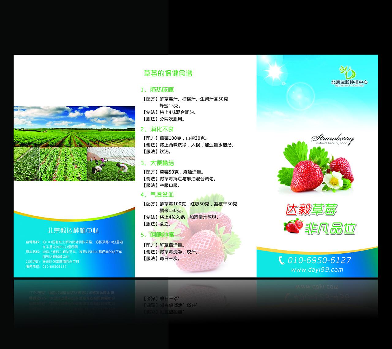 草莓 采摘 种植 三折页 宣传单图片