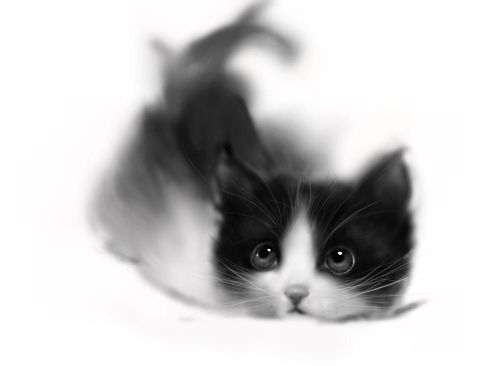 手绘猫咪(黑白)