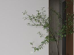 銀合-青云居