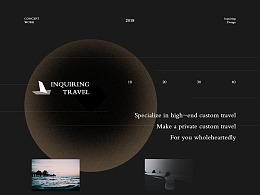 Customized Travel Website