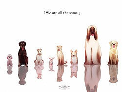 We are all the same.