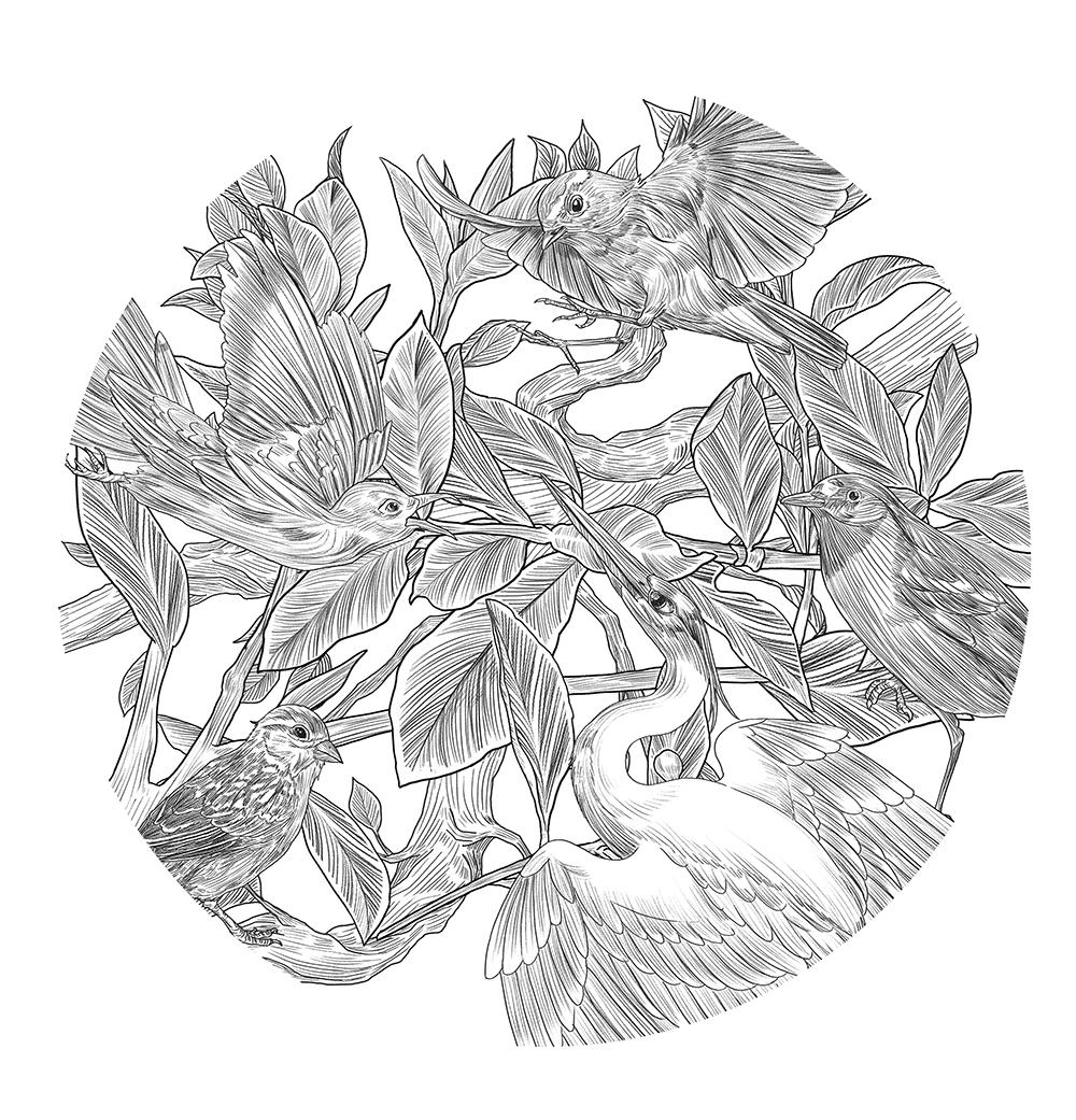 简笔画 设计 矢量 矢量图 手绘 素材 线稿 1000_1041