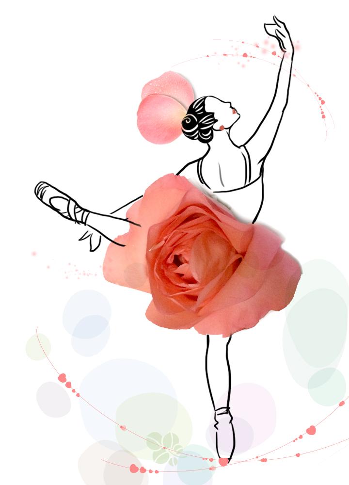 创意玫瑰简约插画