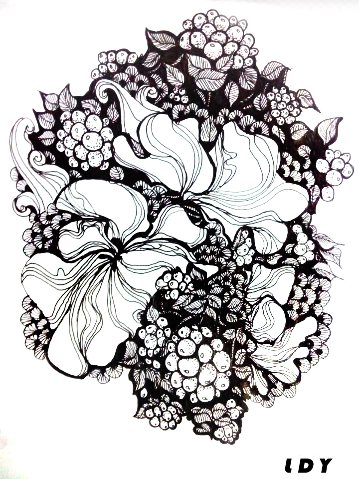 黑白手绘插画|其他绘画|插画|刺仙人掌301