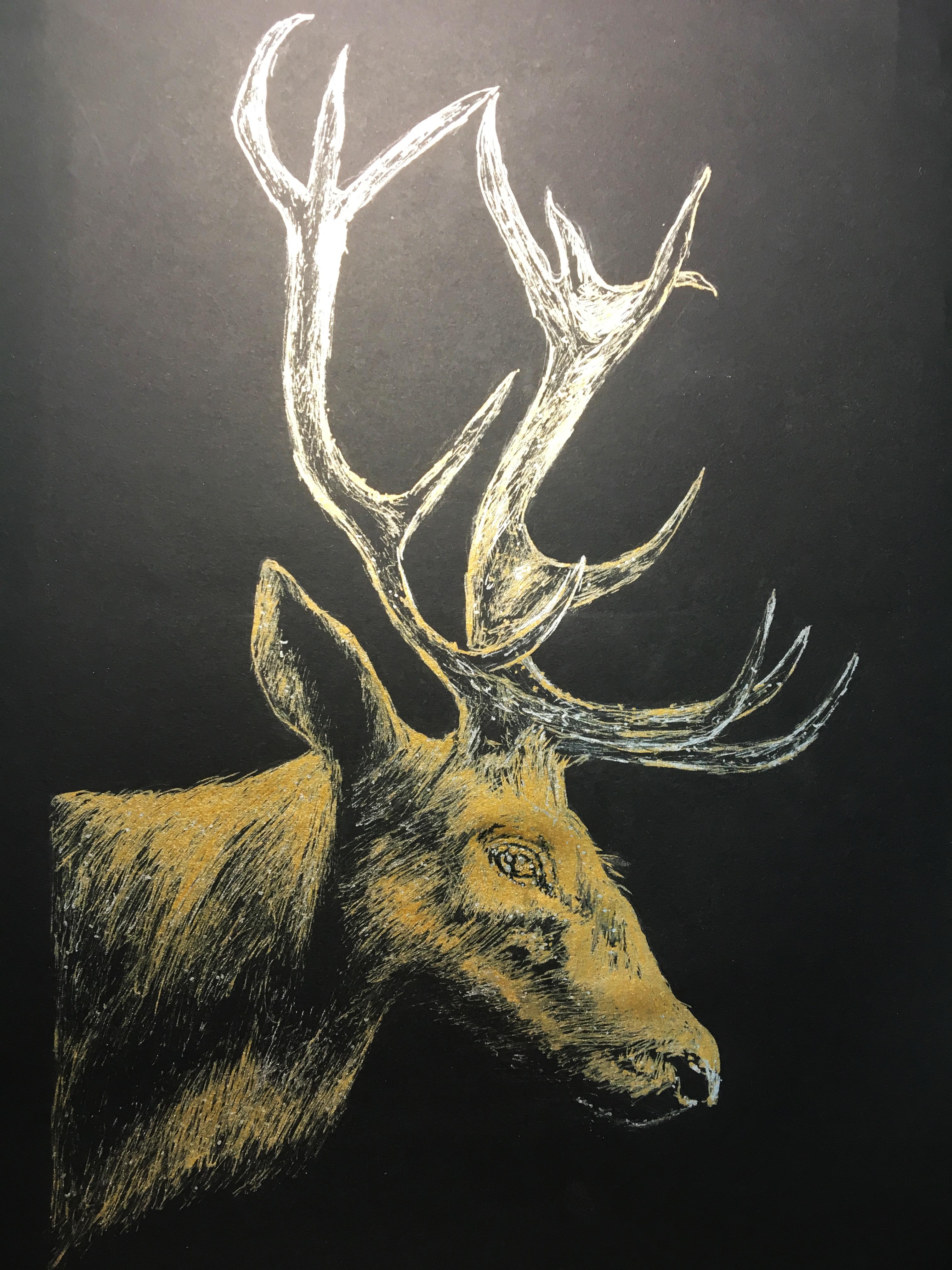 手绘| 鹿