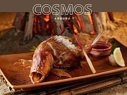 本源食集 × 宇宙设想 COSMOS