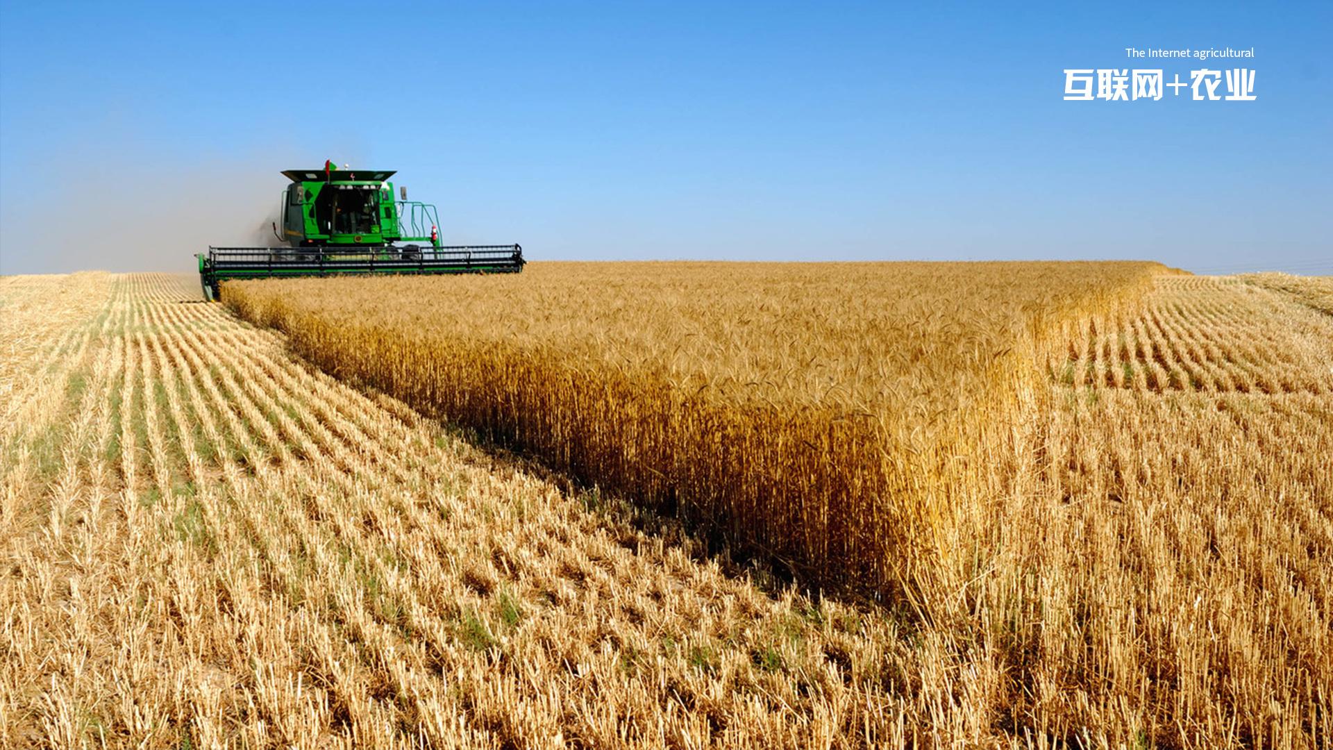 互联网+农业主题系列壁纸