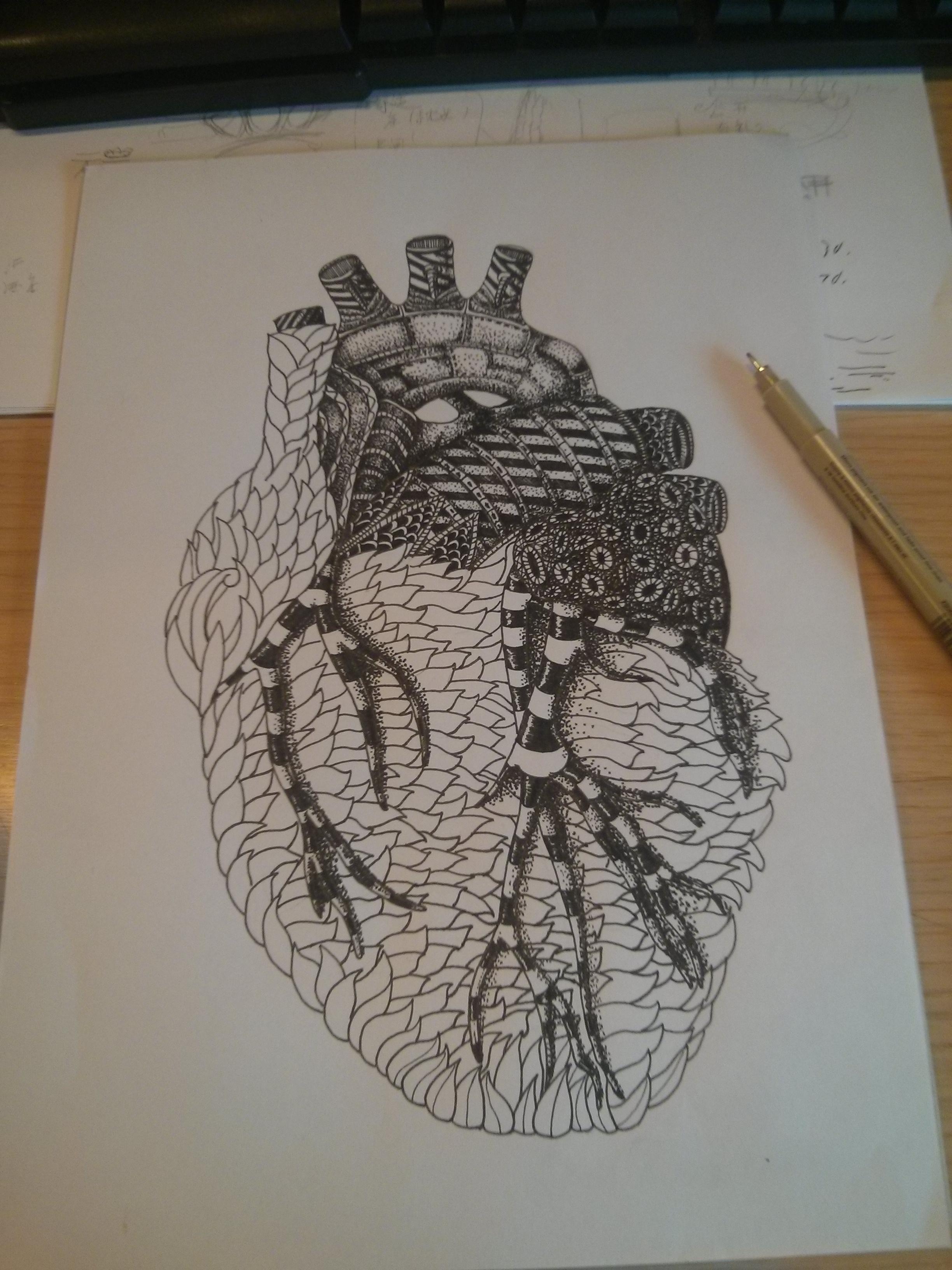 心脏|插画|插画习作|masi525 - 原创作品 - 站酷图片
