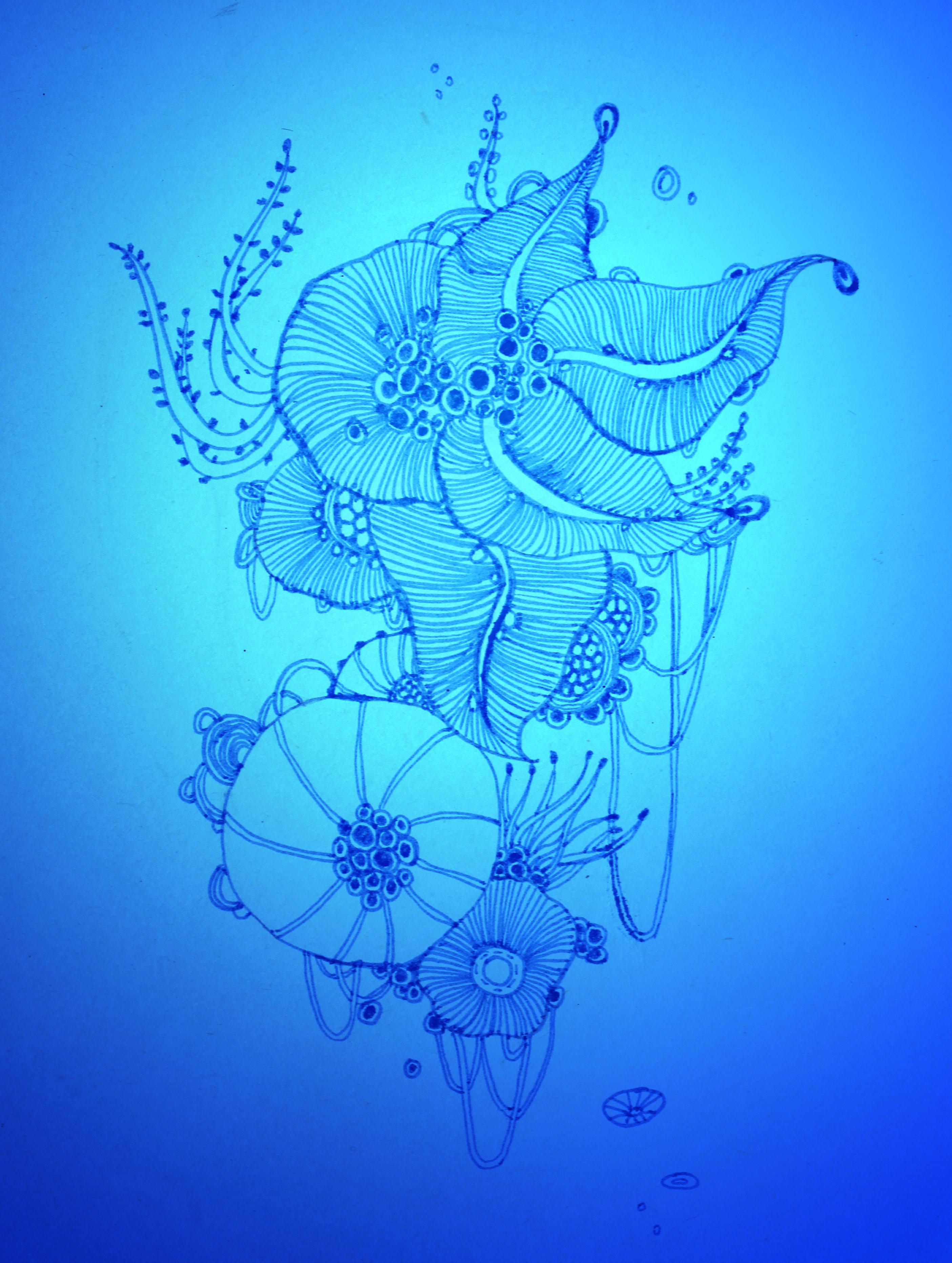 海洋手绘动漫图片