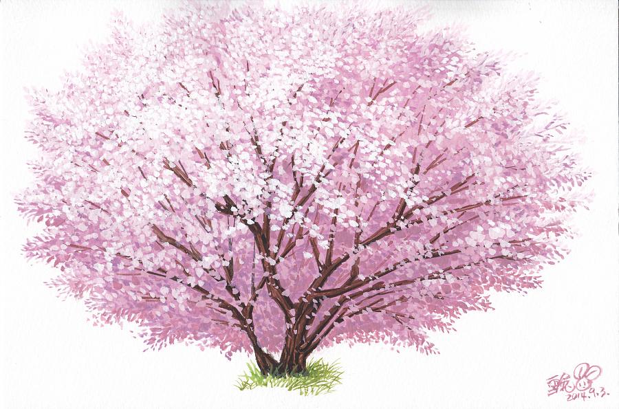 【幸福的樱花树】|水彩|纯艺术|杨雪兔图片